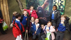chester-zoo-class-4-086